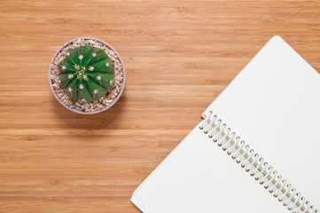 Cactus and notebook on wooden table.