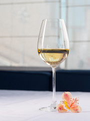 Glass of white wine on a white background and with soft shadow. Beautiful flower near on the table in restaurant