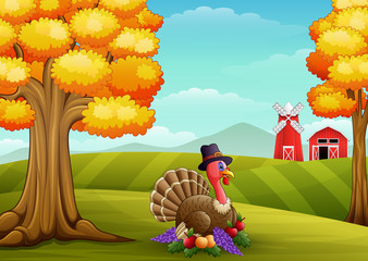 Cartoon turkey in farm background