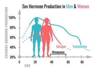 Hormone production chart