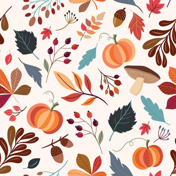 Autumnal seamless pattern with hand drawn decorative elements