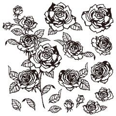 バラのイラスト素材