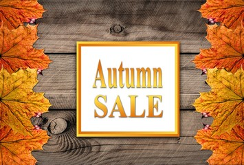 Autumn sale background templete with leafs and woodend backgrund