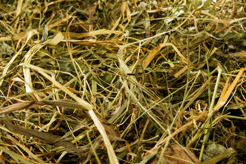 image of hay as a background
