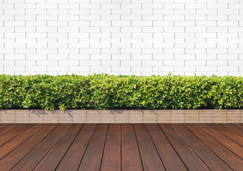 wood floor with plant and white brick wall