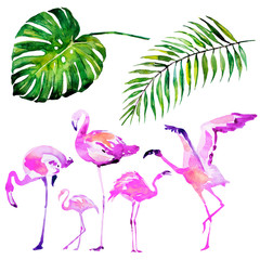 beautiful tropical palm leaves and flamingo, watercolor
