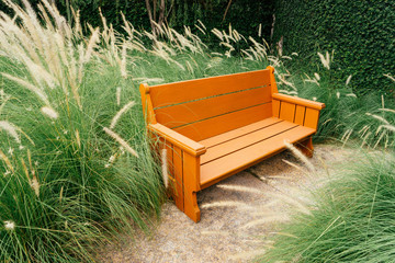 a Bench in Beautiful grass flower (poaceae).