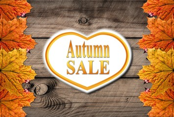 Autumn sale Template with leafs and woodend background
