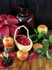 Cranberries in a wicker basket surrounded by apples, black rowan and red autumn leaves