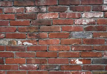 赤煉瓦の塀
