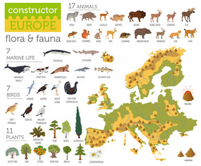 Flat European flora and fauna map constructor elements. Animals, birds and sea life isolated on white big set. Build your own geography infographics collection - fototapety na wymiar