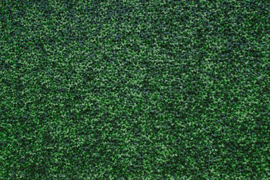 Artificial green leaves decorative pattern wall background.