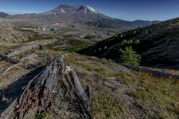 Poster Volcano Beautiful Mount St. Helens National Volcanic Monument in Washington State, U.S.A.