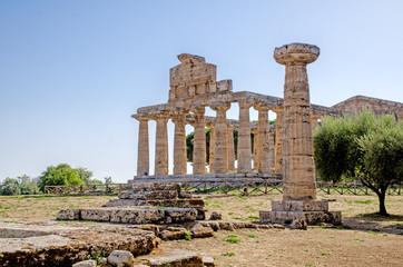 tempio antico con colonna, Paestum