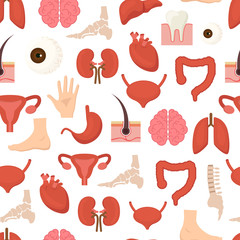 Cartoon Human Internal Organs Background Pattern on a White. Vector