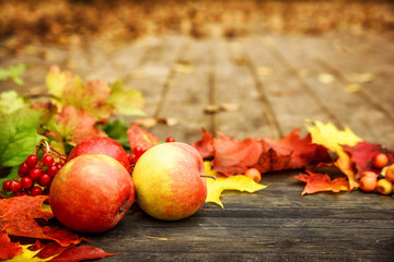 Autumn background with apples and leaf on a wooden