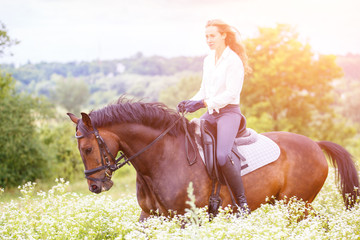 Young rider girl with long hair riding bay horse on chamomile field at sunny day