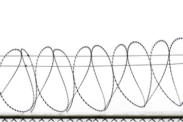 Freedom concept using : Symbol of  Barbed wire wall is symbol of