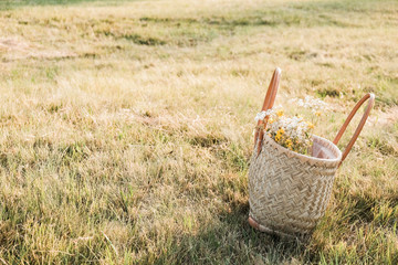 Basket on dry grass