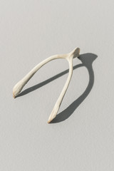Collection of Superstitious Wishes, Bird Wishbones