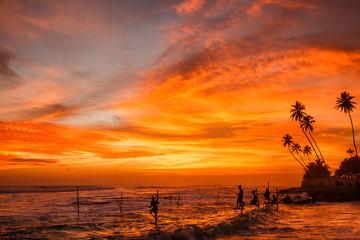 Sunset stilt fishing in Sri Lanka