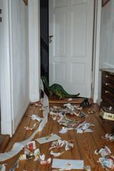 Rebellious dinosaur trashing up the hallway.