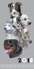 Postcard with dogs of different breeds-1