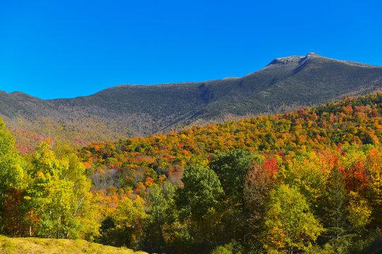 Autumn on Mount Mansfield, Vermont