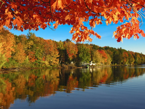 Autumn colors reflected in a Vermont Lake