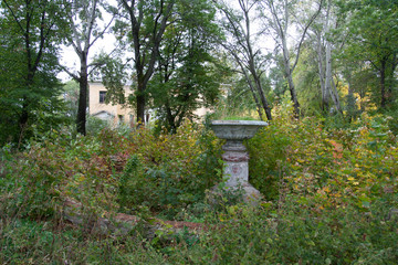 Overgrown by trees ruins of mansion. Abandoned park with broken fountain