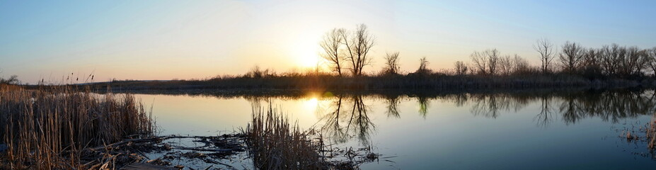 sunset on the lake, the dark silhouette of the trees and reeds reflected on the water, panorama, landscape