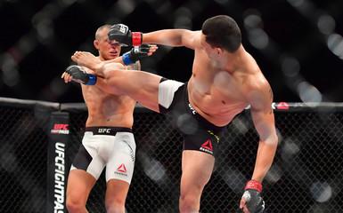 MMA: UFC Fight Night-Ferreira vs Hermansson