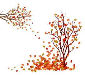 Autumn tree. Fall Leaves Background