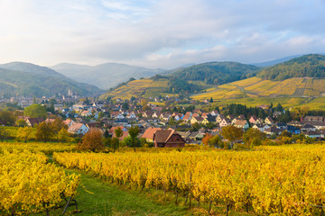 Village of Barr in Vineyard landscape in region Alsace, France