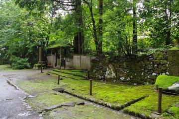 苔がきれいな日本の神社