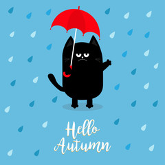 Hello autumn. Black cat holding red umbrella. Rain drops. Angry sad emotion. Hate fall. Cute funny cartoon baby character. Pet animal collection. Blue background. Isolated.