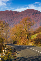 asphalt road mountainous countryside. beautiful autumn morning scenery
