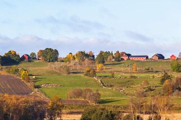 Rural autumn landscape