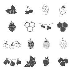 berry collection icons set vector