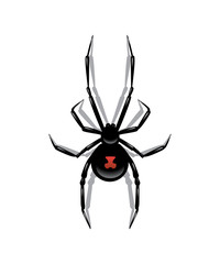 Black spider isolated on white background. Vector object.