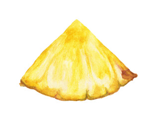 Slices of pineapple, Watercolor illustration on white background