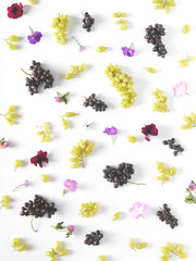 Vertical composition of  fruits, top view. Food collage. Black and green grapes, lilac flowers on a white background. The pattern of grapes of different varieties, top view. Food background.