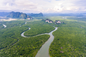 Aerial view of mangrove forest at Phang-Nga bay, Thialand