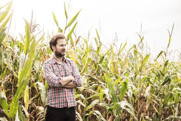 Caucasian farmer in plaid shirt and corn field - agriculture