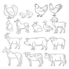 Vector illustration of outline figures of farm animals. Animals in line style on white background.