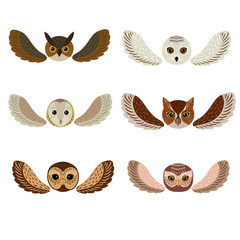 Six owls faces with wings
