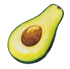 Avocado painting.Painted with watercolor.