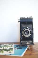 Vintage retro folding film camera with photos of palm trees