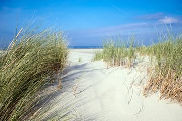 Wall Mural - Nordsee, Strand auf Langenoog: Dünen, Meer, Entspannung, Ruhe, Erholung, Ferien, Urlaub, Meditation :)