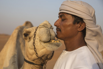 Camel Biting a Man's Face